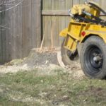 Stump Grinding by Walt's Tree & Stump Removal